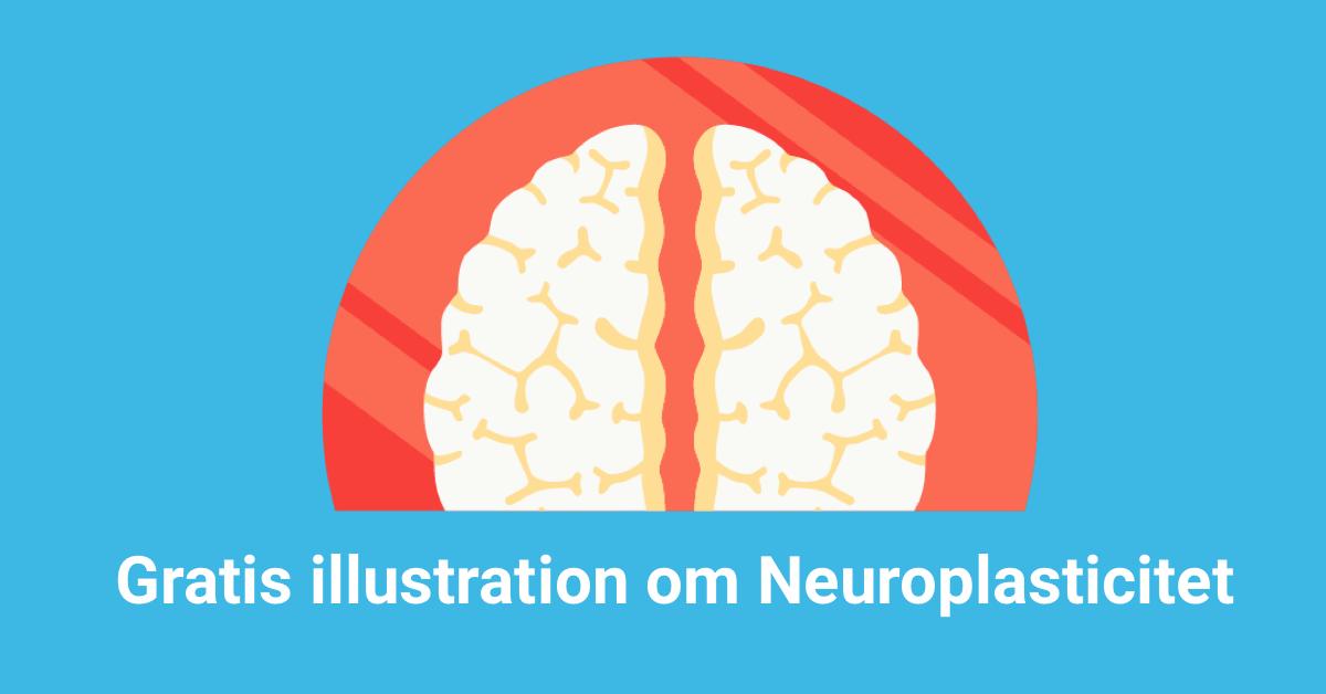 SEillustrasjon_infographic_neuro